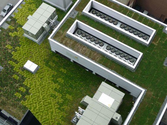 . green roofs   Beltline.ca