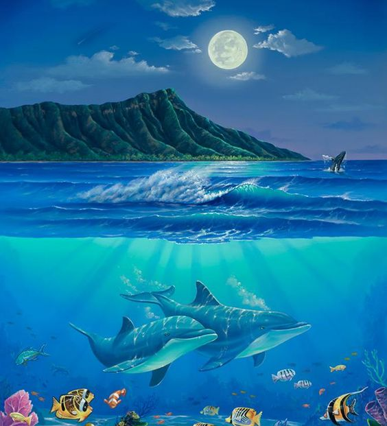 Images for wall murals dolphin wall murals wallpaper for Dolphin wall mural
