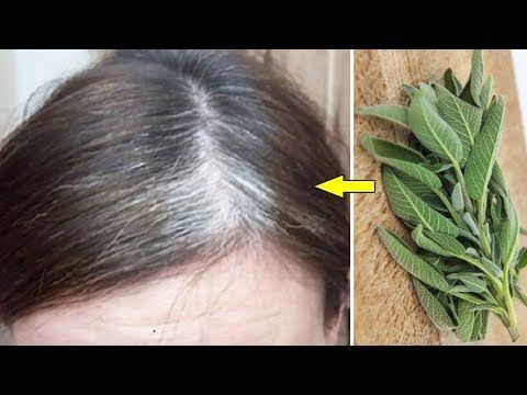 Youtube Natural Beauty Tips White Hair Treatment Beauty Hacks