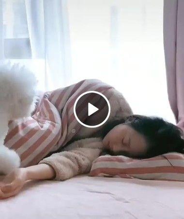 Ei mulher, Deixa eu dormir aqui com você é mais confortável