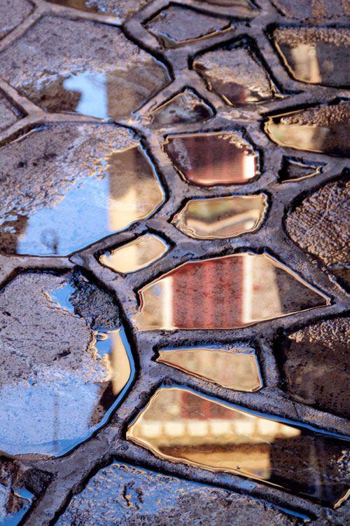 REFLECTED PALMA #texturas
