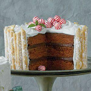 Peppermint-Hot Chocolate Cake