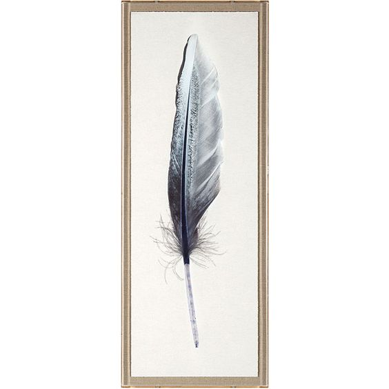 Natural Curiosities Sterling Feathers 2 ($1,738) ❤ liked on Polyvore featuring home, home decor, wall art, watercolor wall art, framed wall art, oversized wall art and natural curiosities