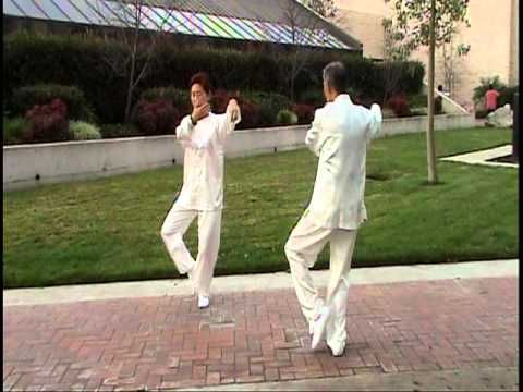 Two people mirror Tai Chi form 24 - YouTube