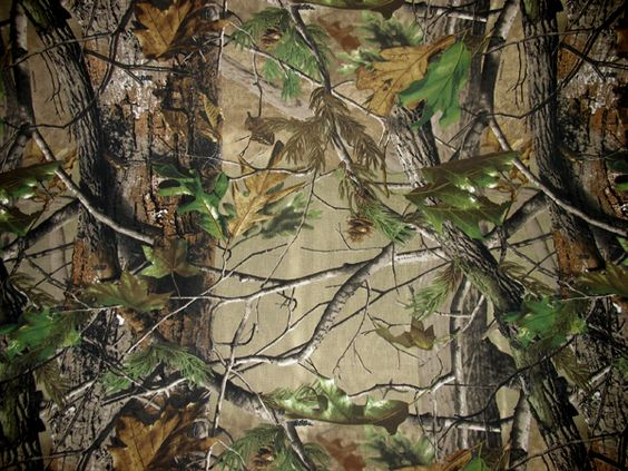 realtree | Home / Merchandise / Camo Fabric / Realtree ...