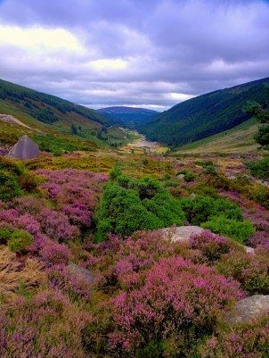 Wicklow - I saw this in the movie PS I love You and want to go soooo bad