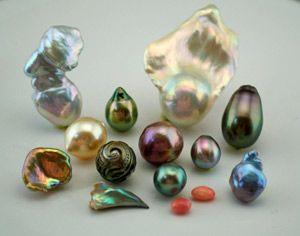 Kojima Pearl - Unique pearls available.: