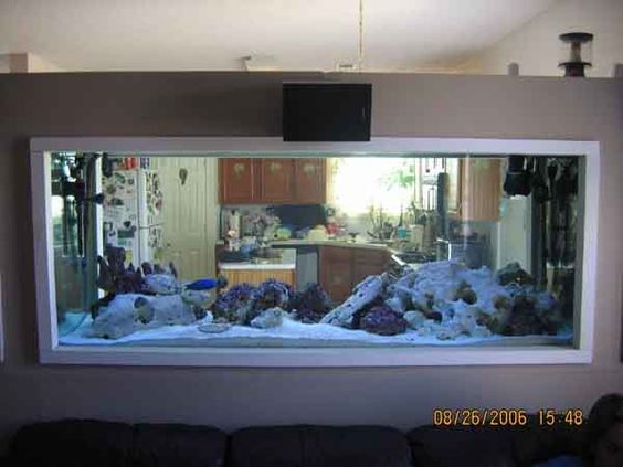 Fish tank between kitchen and living room aquariums for Fish tank house