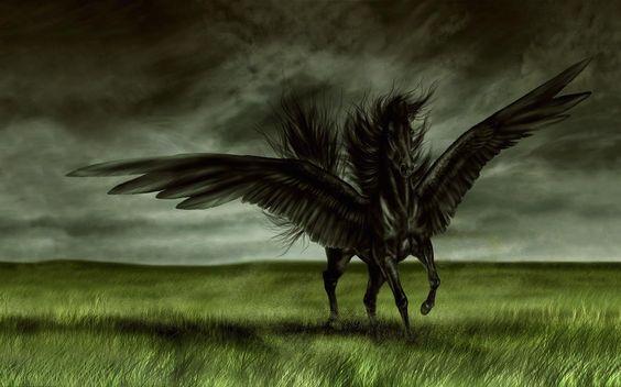 wallpaper-black-horse-with-wings-digital.jpg 1600×1000 пикс