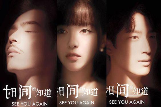 See You Again ( 2017)