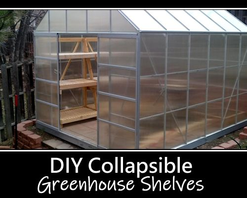 Diy Collapsible Greenhouse Shelves Greenhouse Shelves Diy Greenhouse Shelves Greenhouse