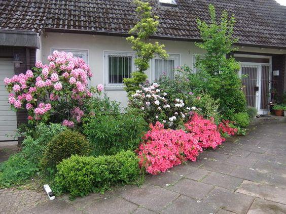 Historische Rosen 2016 - Seite 46 - Rund um die Rose - Mein schöner Garten online