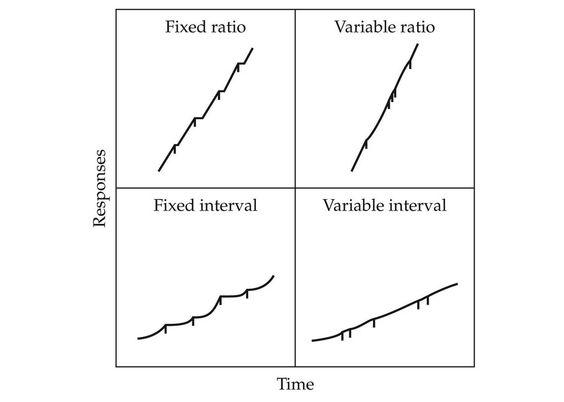 variable interval reinforcement schedules graph for quiz - Google - functional behavior assessment