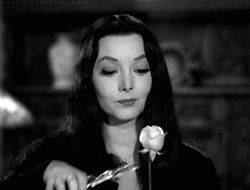 my gif gif Black and White vintage horror 1960s the addams family Morticia Addams 1964 classic horror