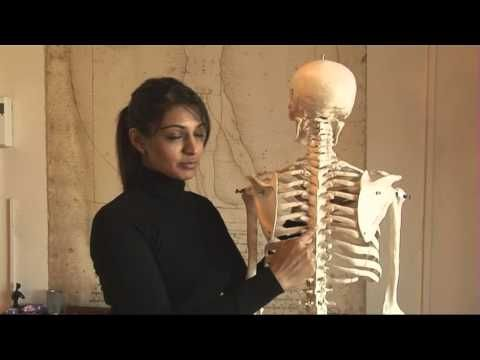 Pilates Principles - Scapula Stability - YouTube