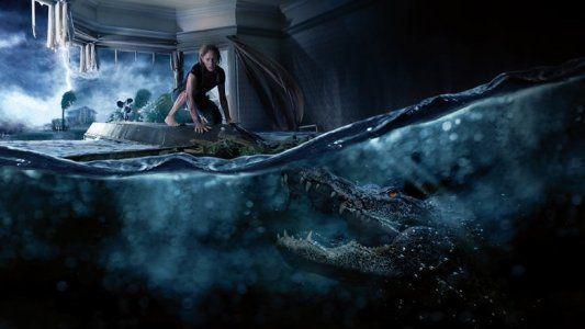Sobra De Obra No Jardim Joia De Casa Movies To Watch Online Horror Movies Movies Online