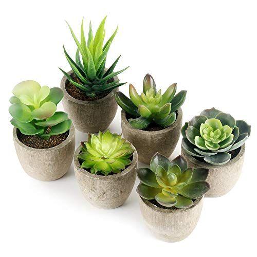 Gomaihe Plante Artificielle Interieur 6 Pcs Fausse Plantes Avec Pot Gris Atificielles Herbe Decoratio En 2020 Pots Succulentes Plantes De Cuisine Plantes Artificielles