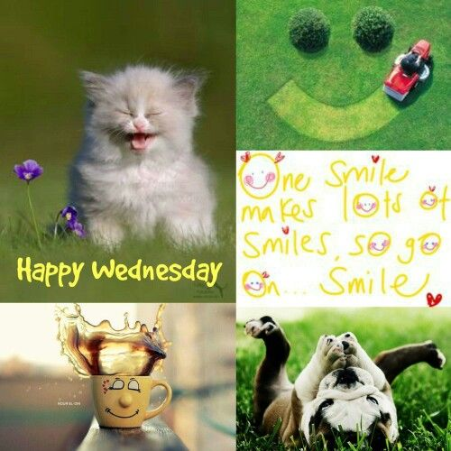 If you can do just one thing today, share a smile with someone.  You just might make their day.  Sending you lots of peace, love and positive energy on this wonderful Wednesday! #wednesday #wellnesswednesday #smile #love #peace #happiness