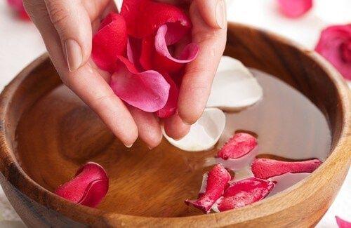 Acqua di rose: preparazione e i meravigliosi benefici L'acqua di rose racchiude nella sua delicata ed inebriante essenza i più antichi ed efficaci segreti di salute e bellezza. Veniva utilizzata in India e nei paesi arabi come rimedio base per ringiovanire la pelle, per i riti religiosi e anche nella preparazione dei cibi. Le sue proprietà sono innumerevoli e vogliamo insegnarvi come ottenere in modo semplice una delicata e meravigliosa acqua di rose da utilizzare ogni giorno per la vostra…