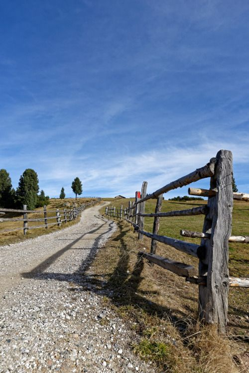 Weg by heinoklinnert  Bäume Natur Italien Reise Landschaft Himmel Wolken Weide Perspektive Wandern Schatten Gras Dolomiten