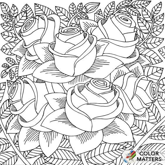 - Omeletozeu Rose Coloring Pages, Love Coloring Pages, Coloring Books