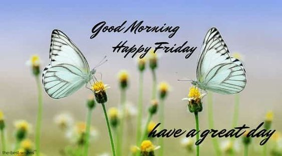 wonderful-pic-of-good-morning-happy-friday