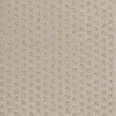 carpet flooring, wilmington nc and flooring on pinterest