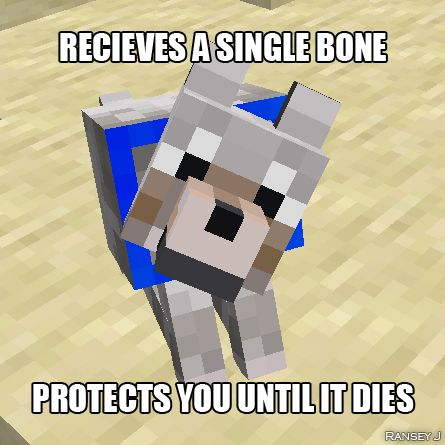 Minecraft dogs are AWESOME XD they just might save your life. cats on the other hand...