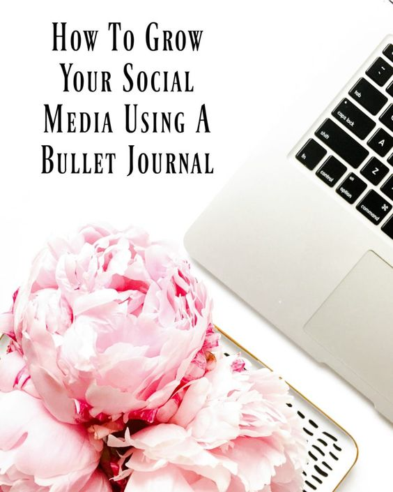 Learn how to grow your social media using a bullet journal and a few other tricks!