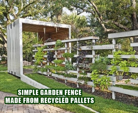 cerca para jardim vertical: with plants. Nice way to create a vertical garden. or planter boxes