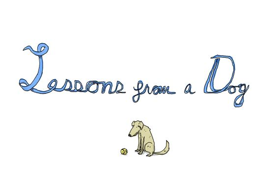 Lessons from a Dog - Patrick Moberg: click through for the whole story.