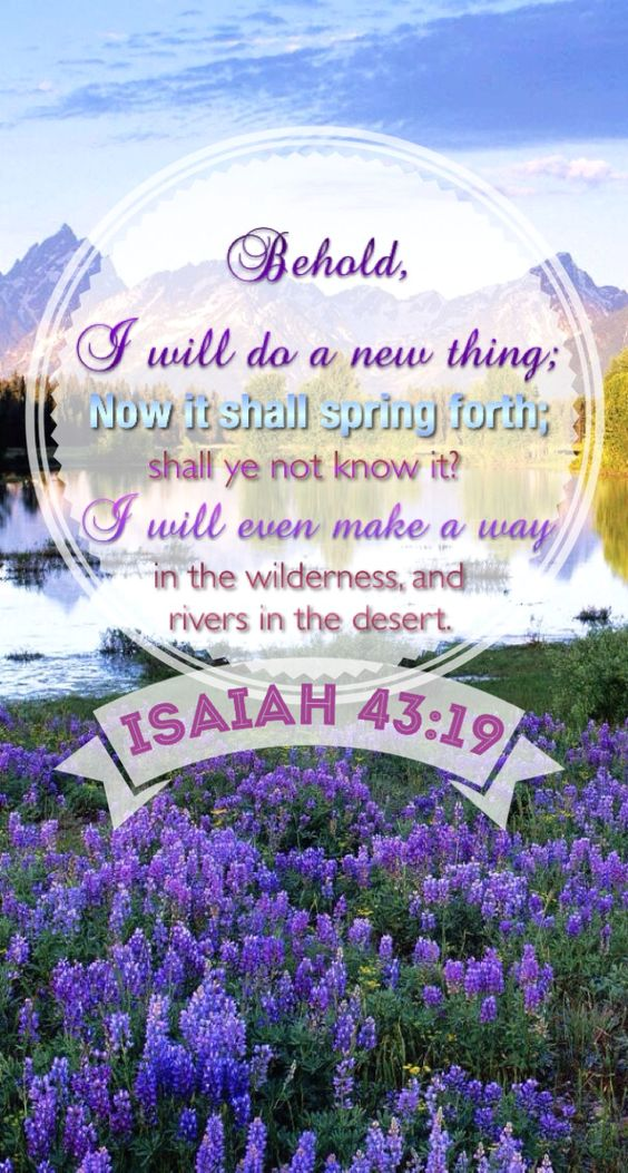 Isaiah 43:19 Behold, I will do a new thing; now it shall spring forth; shall ye not know it? I will even make a way in the wilderness, and rivers in the desert.