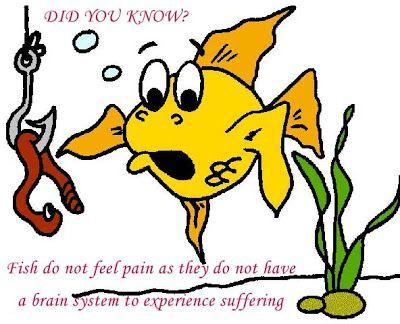 Pinterest the world s catalog of ideas for Do fish feel pain