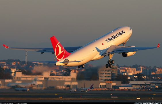 Airbus A330-243F - Turkish Airlines Cargo | Aviation Photo #4074079 | Airliners.net