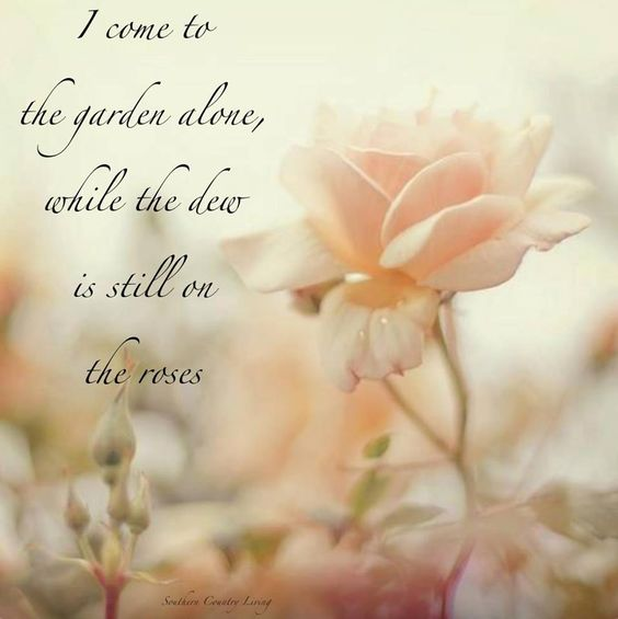 Image result for i come to the garden alone