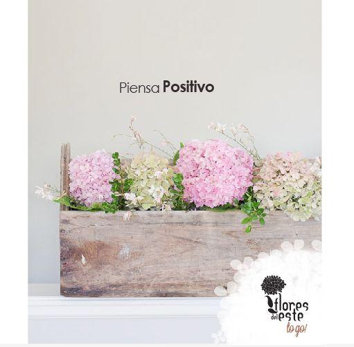 Piensa positivo. #hortensias #flores #elegancia #decoración #hogar #floresdelestetogo