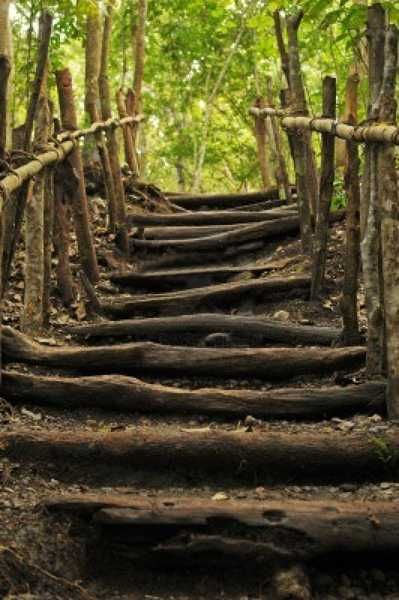 risk of stairs Is an interactive process consisting of steps, which, when undertaken in sequence, enable continual improvement in decision making  risk management has 3 main stages, risk identification, risk assessment and risk control in many cases in the early phase of.