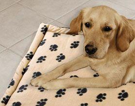 Coperta imbottita per cane