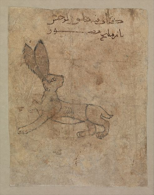 """""""Hare"""", Folio from a Bestiary, 11th–12th century. Egypt, probably Fustat. The Metropolitan Museum of Art, New York. Rogers Fund, 1954 (54.108.3)"""