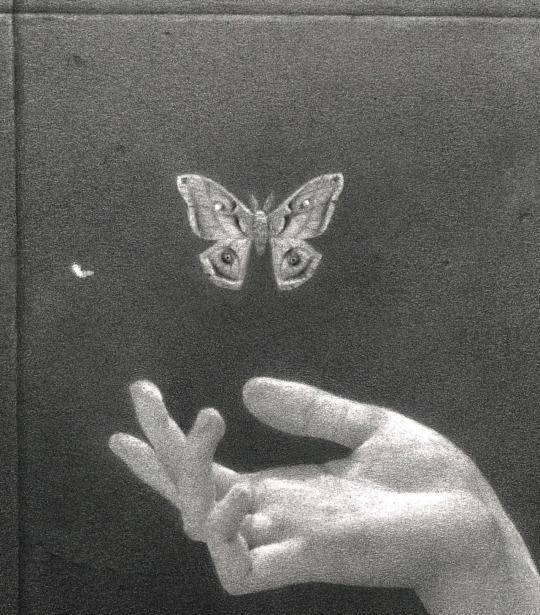 Pin By 𝔪𝔞𝔡𝔡𝔦𝔢 𝔰𝔪𝔬𝔨𝔢𝔰 On Souvenirs D Un Papillon Aesthetic Art Black And White Aesthetic Dark Aesthetic