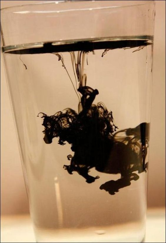 b815 Don Quixote in a drop of ink - incredible! #viqua: Timed Photographs, Black Horses, Perfectly Timed Pics, Perfectly Timed Photos, Instant Seahorse, Photography Ideas, Optical Illusion