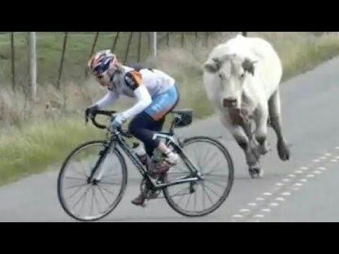 Top 20 Moments The Cycling World Will Never Forget Youtube