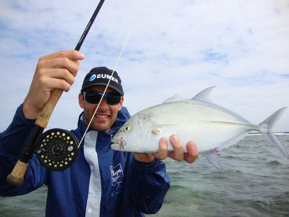 Baby trevally on fly in Mauritius. Small, but on the right tackle, lots of fun!