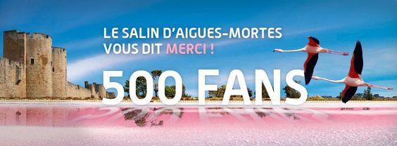 #atnetplanet #Facebook #Salins #SalinsdAiguesMortes #cover