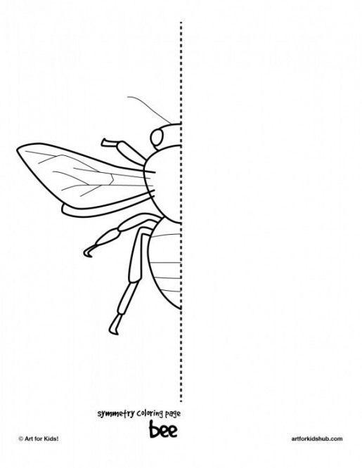 Bug Symmetry Arthropods Arthropods Drawing Symmetry Art Art For Kids Hub Homeschool Art