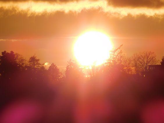Die Sonne berührt den Horizont und setzt die Wälder in Flammen. Ihre Antwort: sie werden transparent. Sie lassen das Licht durch ihre Äste zu mir dringen. Das Licht erzählt mir vom Wunder am Horizont, das sich mir naht.