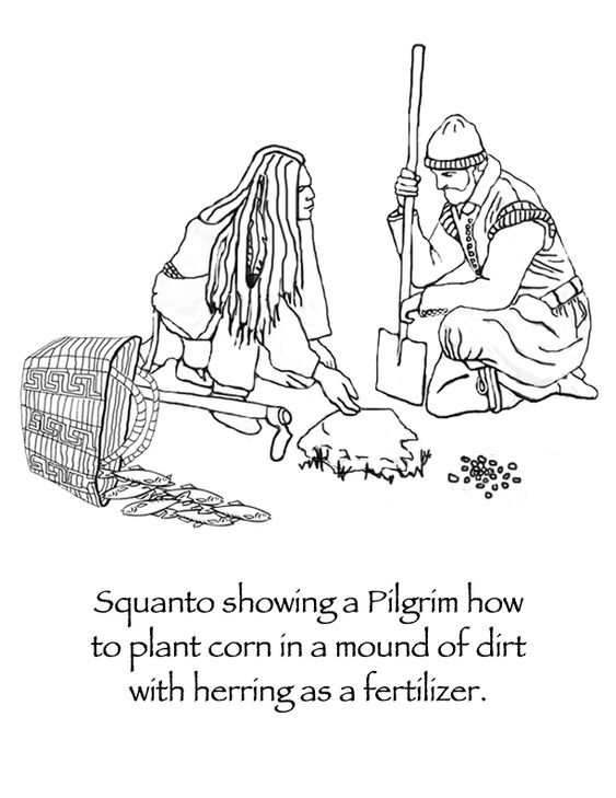 English coloring and plants on pinterest for Squanto coloring pages