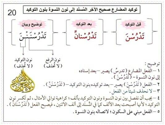 Pin By سنا الحمداني On علم النحو Bullet Journal Journal Notebook