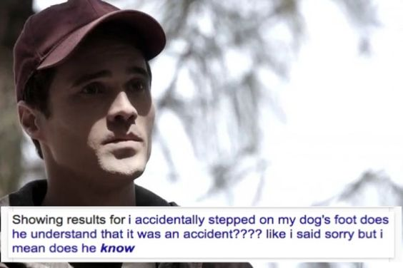 He did a little more than step on his dog's foot... Just sayin'