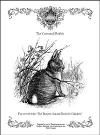burgess animal book coloring pages - photo#3